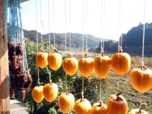 干し柿、製造中