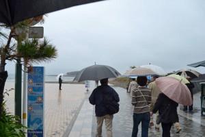 雨の中、青島到着