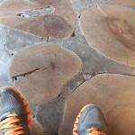 出口の床は、木の年輪