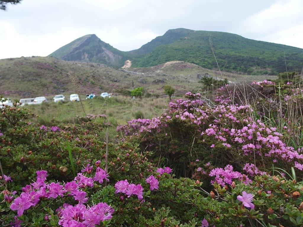 硫黄山、韓国岳、ミヤマキリシマ
