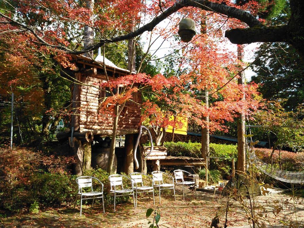 陶器ショップ、ピザとカフェの店。 紅葉も綺麗です。